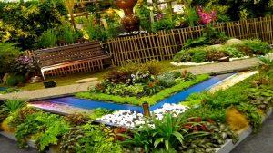 Beginner's Tips for Landscaping & Gardening