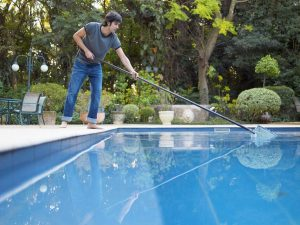 Bugs Away from Your Swimming Pool