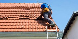 Basics of Roof Maintenance