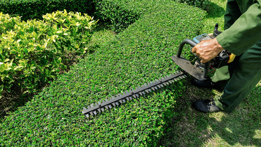 How to Spot the Best Landscaping Company Long Island?